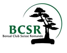 Logo BCSR